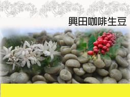 【興田咖啡生豆】衣索比亞 水洗耶加雪菲G1 潔蒂普鎮 沃卡村 班可 果丁丁處理廠 Lot124【每包500公克185元】