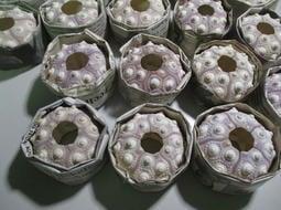 【阿草雜貨舖】-*皇冠海膽(小) 出清價1顆40元 數量有限,售完為止*- 寬約6.2公分~6.7公分, 產地:菲律賓