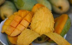 !美味!健      健康 !重品質★土芒果青★20元/1台斤現 貨供應              .自產自銷