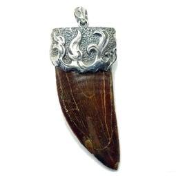 [獨家] 9cm 北非暴龍 摩洛哥 鯊齒龍 化石 巨牙墜~925純銀包墜頭,台灣銀匠手藝 (兩側鋸齒邊完整)