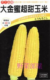 【野菜部屋~蔬菜種子】N03 大金蜜超甜玉米種子一磅 , 泰國公司第一名品種 , 甜度高 ,每包620元~