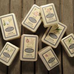 MARIUS FABRE 法鉑天然草本橄欖皂250G 特價290$